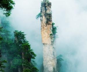 原始林と奇岩・奇峰の中を歩く 撮影の旅 2泊3日